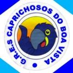 caprichosos_pav_media
