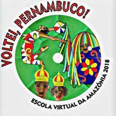 Conheça o enredo da Escola Virtual da Amazônia para o Carnaval 2018