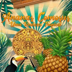 Conheça o enredo do GRESV Império do Samba para o Carnaval 2018